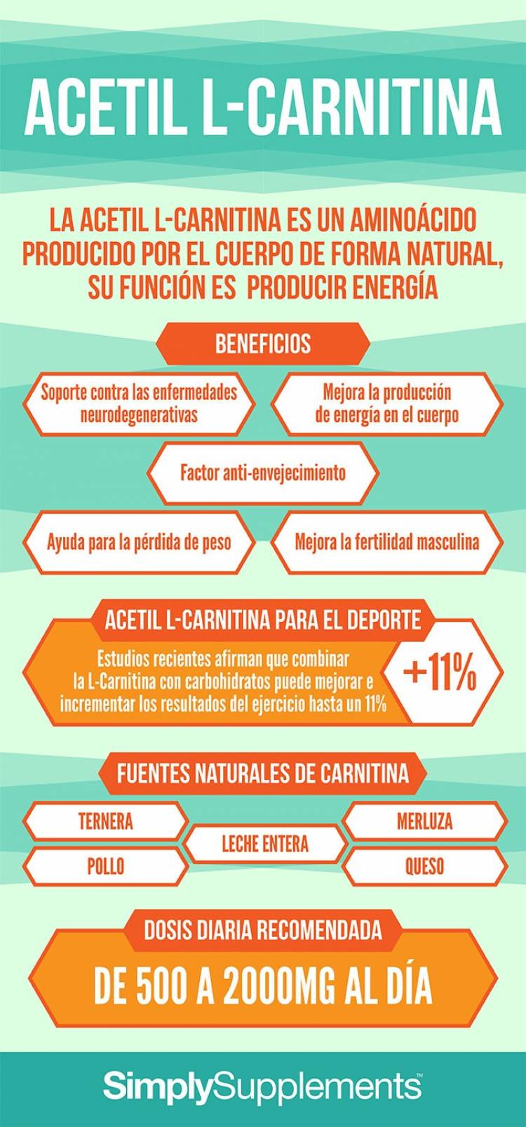 Beneficios de la L-Carnitina