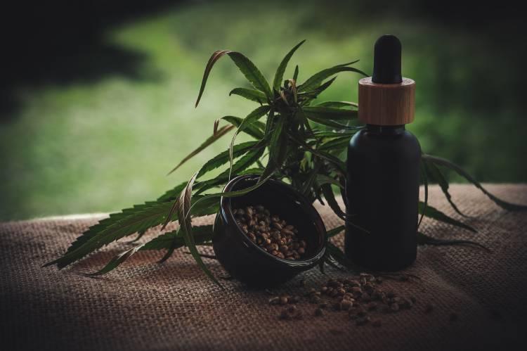 ¿Qué es el CBD? Propiedades medicinales y beneficios