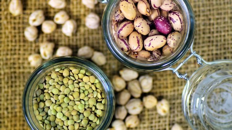 Top 10 alimentos con proteína vegetal