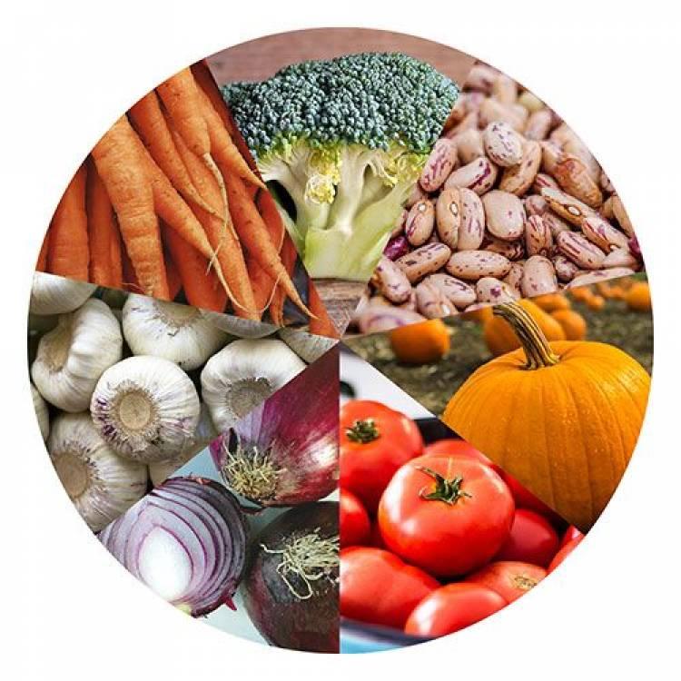 antibiótico natural comida bacterias próstatas