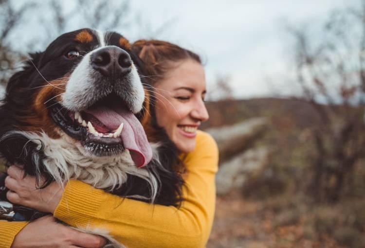 Cúrcuma para perros
