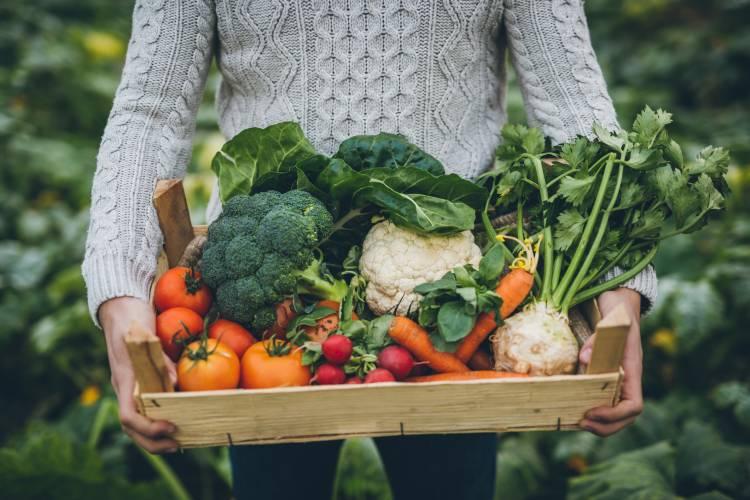 Deficiencias más comunes en la dieta vegana