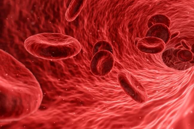 7 Maneras de fortalecer el sistema inmunológico